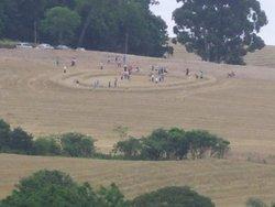 Sinais no Brasil: círculos em plantações de trigo em Santa Catarina. Cortesia: Carlos Machado (Click para ampliar)